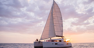Explore a magic world Catamaran Snorkeling and Sunset Tour